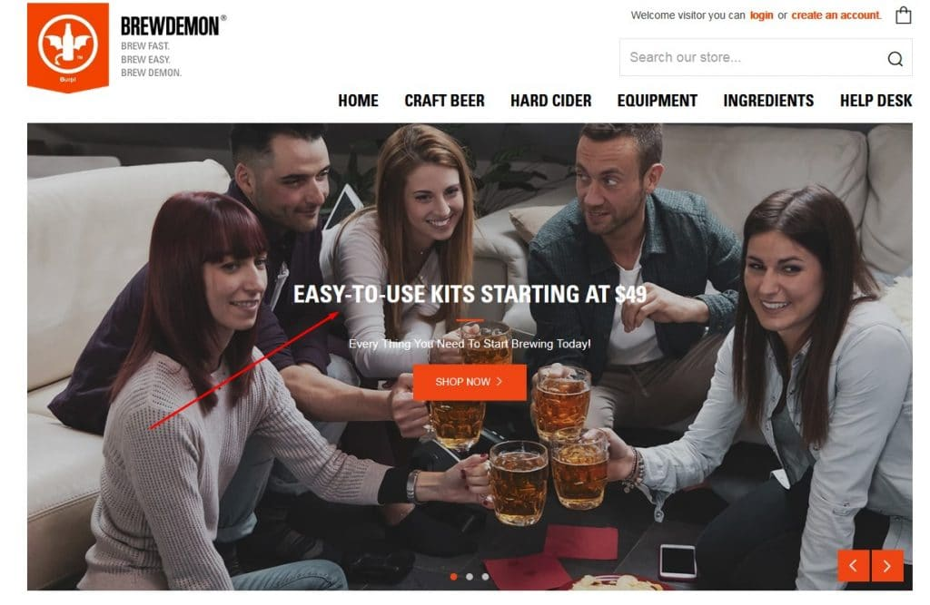 homebrewing beer ads example landing page
